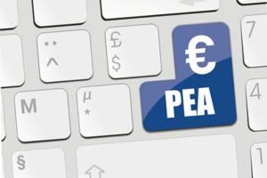 Plan d'Epargne en Actions (PEA)